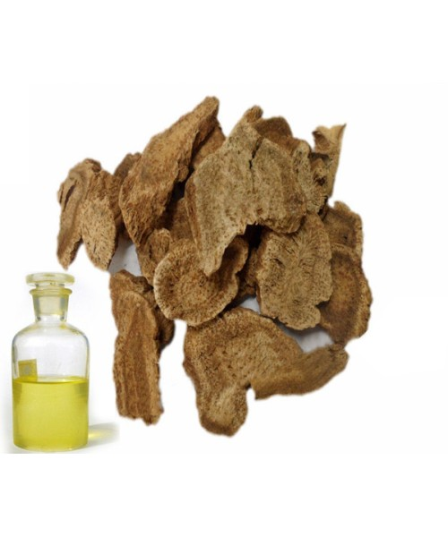 Costus Root Abs Oil